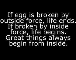 Egg quote